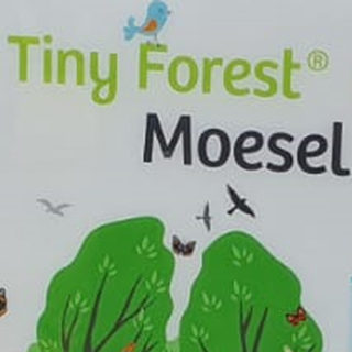 Tiny Forest Weert
